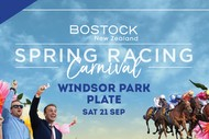 Windsor Park Plate - Bostock NZ Spring Racing Carnival
