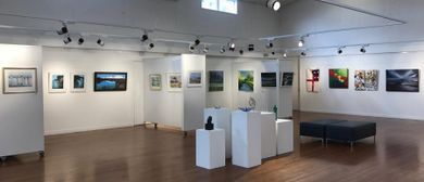 Hibiscus and Bays Art Awards