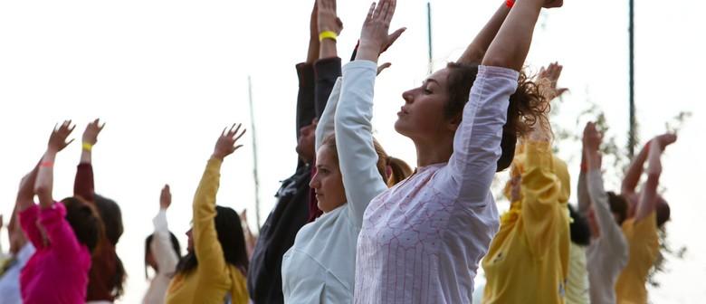 Yoga Class Level 1-2 - Beginners