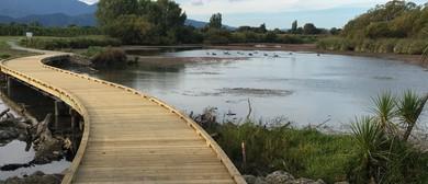 Te Whanau Hou Grovetown Lagoon AGM