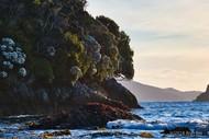 Image for event: Fiordland Spring Adventure