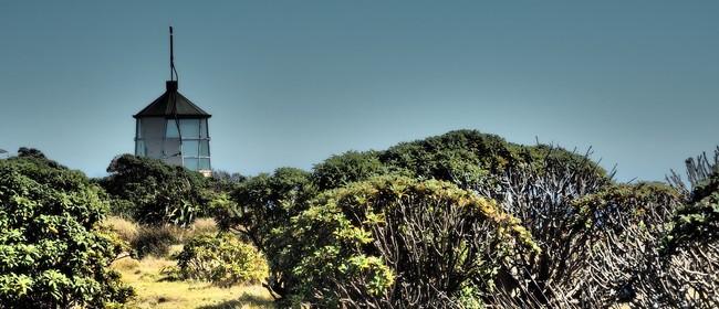 Fiordland History Adventure