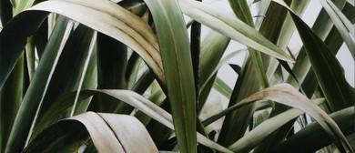 Botanical Art Exhibition