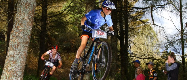 Evo Cycles Tokoroa Day Night Thriller Plus TOK 100, 50 & 25