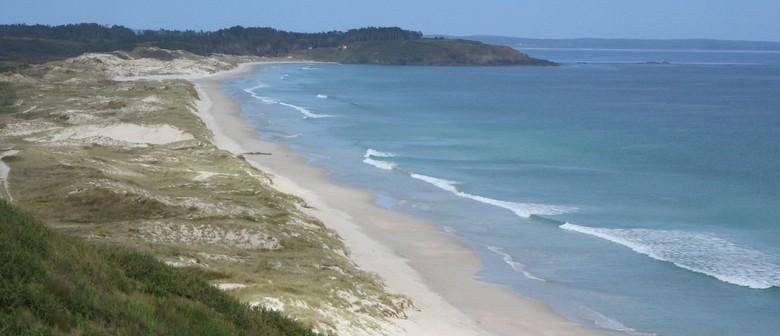 Discover Doubtless Bay Walking Weekend