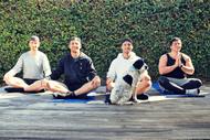 Image for event: Broga – Men's Yoga Class