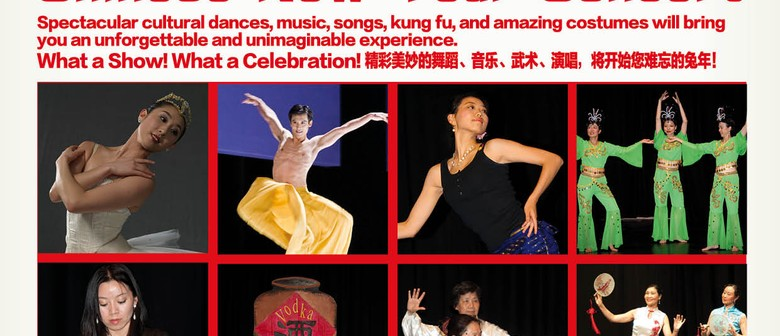 2011 Chinese New Year Concert