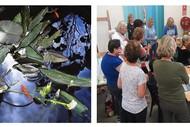 Image for event: Pastel Workshop with Julie Freeman