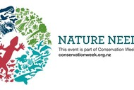 Image for event: Conservation Week Planting Day – Yellow-Eyed Penguin Trust