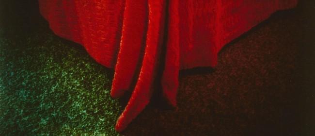 Gary Blackman – In The Hand, Polaroid SX70's, 1978–2004