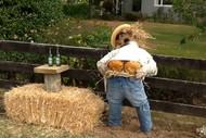 Marton Harvest Festival