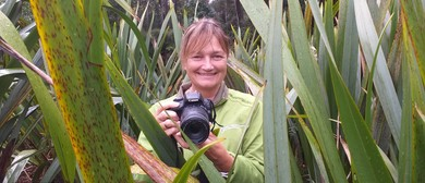 Bay of Plenty Conservation Week Photography Competition