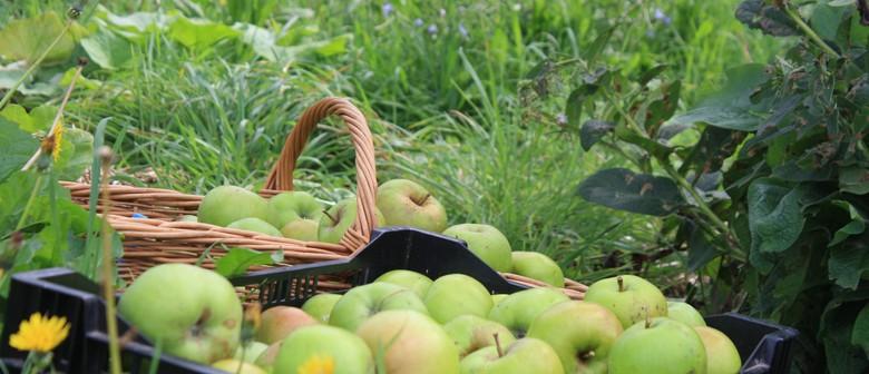 The Happy, Healthy Fruit Tree Workshop