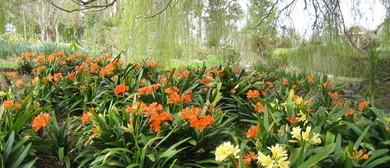 Coatesville Garden Ramble 2019