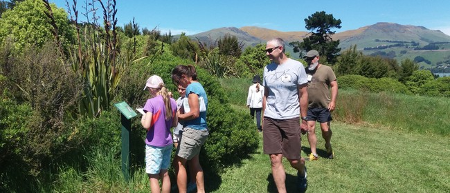 05 'Marooned on Quail Island' Nature Walk & Treasure Hunt