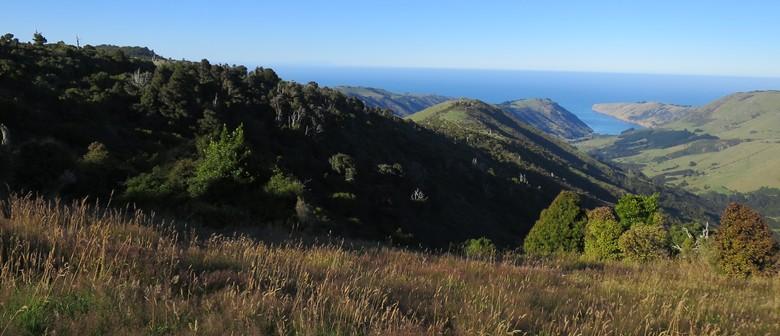 22 Mt Pearce Ridge Walk