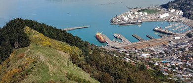 25 Ecology of the Port Saddle and History of Lyttelton Port