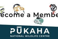 Image for event: 500 New Pūkaha Members for Conservation Week