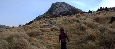 27 Kids Nature Trail - Gibraltar Rock and Omahu Bush