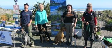 Dog Training - Kiwi and Weka Avoidance