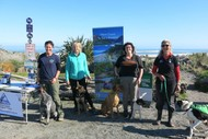 Image for event: Dog Training - Kiwi and Weka Avoidance