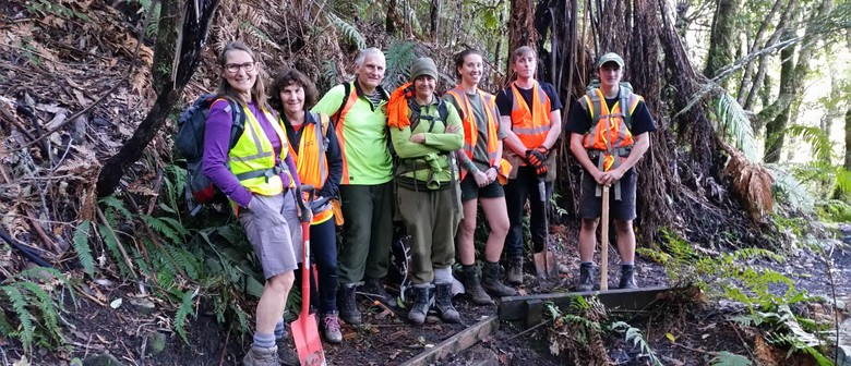 Reinstating and Restoring Tikitapu Scenic Reserve
