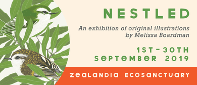 Nestled - An Exhibition by Melissa Boardman