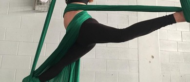 Adult Aerial Silks and Trapeze Classes