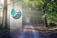 Image for event: Santoft Forest and Beach Half Marathon, 10k and 5k Run/Walk