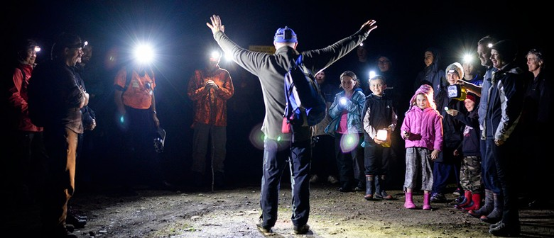 Night Walk With the Whakatāne Kiwi Trust