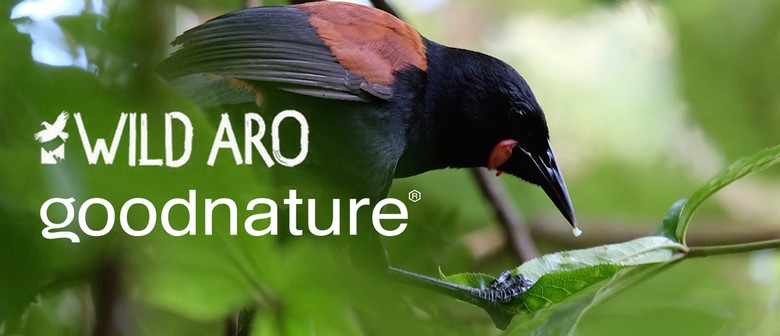 Conservation Week - Trapping Day - Goodnature & Wild Aro