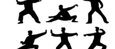 Tai Chi & Chi Gong - Beginners