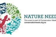 Image for event: Te Angiangi Marine Reserve - Rocky Shore Adventure