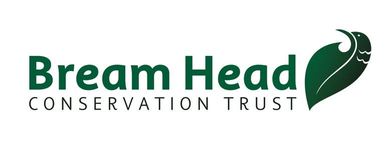 Restoring Resilience - Bream Head a Magnet for Seabirds?