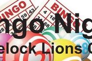 Image for event: Bingo Night
