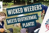Image for event: Wicked Weeders Meet Geothermal Plants