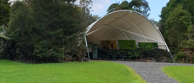 Trounson Kauri Park Guided Night Walk