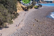 Image for event: Bivouac Outdoor Wild Auckland Trail Run/Walk - Event 4