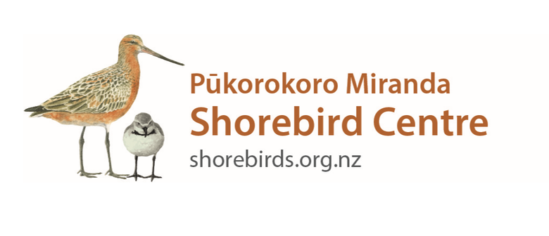 Shorebird Centre Open Day
