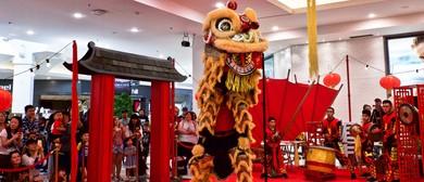 Children Chinese Lion Dance Workshop 2019