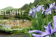 Image for event: Delight - Celebrating Spring: CANCELLED