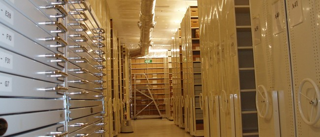 Hutt City Council Archives Tour