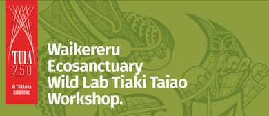 Waikereru Ecosanctuary Wild Lab Tiaki Taiao Workshop