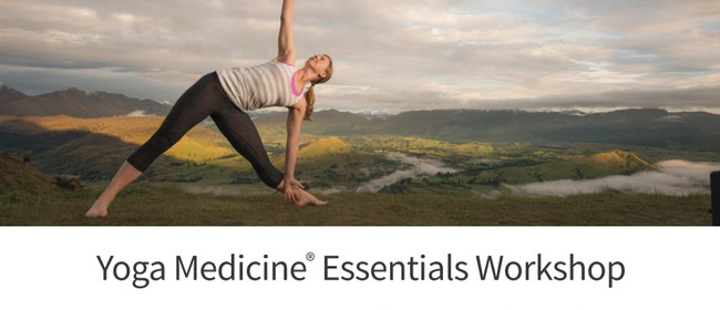 The Yoga Medicine Essentials Workshops