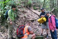 Image for event: Waihirere Trapping Project