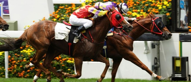Melbourne Cup - The Winner's Circle