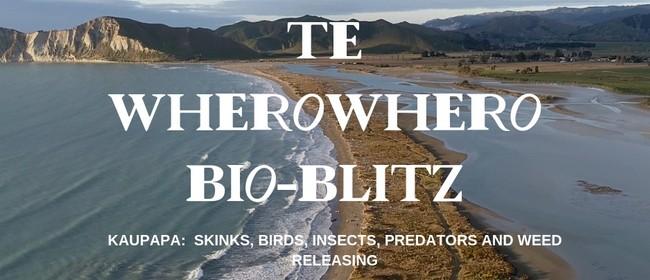 Te Wherowhero Lagoon Bioblitz