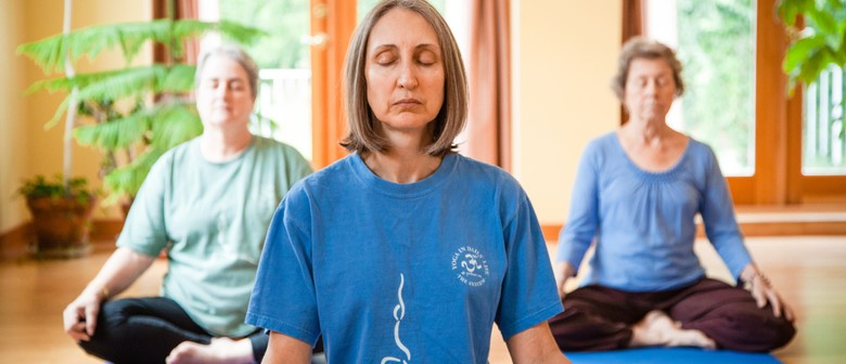 Gentle Yoga Class Suitable for Seniors
