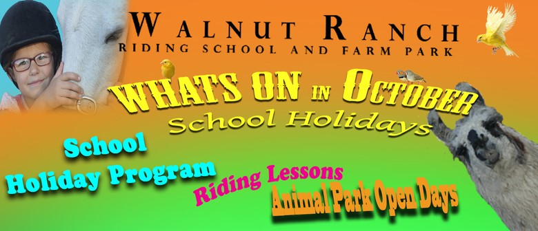 School Holiday Programme & Open Days