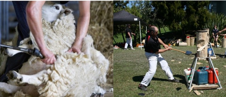 Kaipara Flats Country Show Day